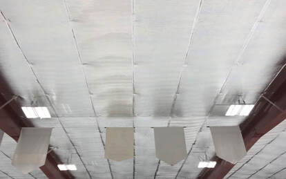 Arena Low E Ceilings